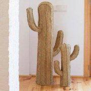 cactus esparto2